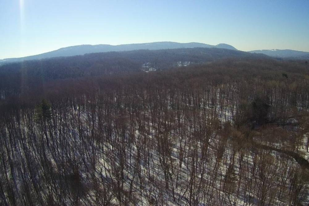 Drone shot of trees in a forest with snow on the ground and Sleeping Giant Mountain in the background