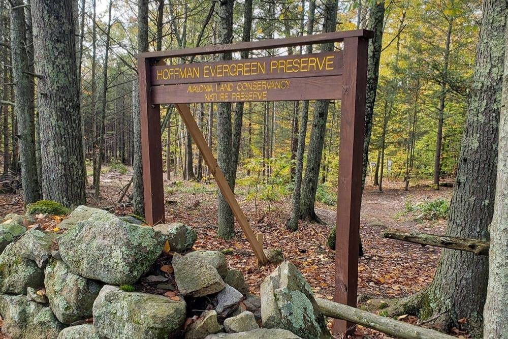 Trailhead sign with rocks at the bottom and trees in the background