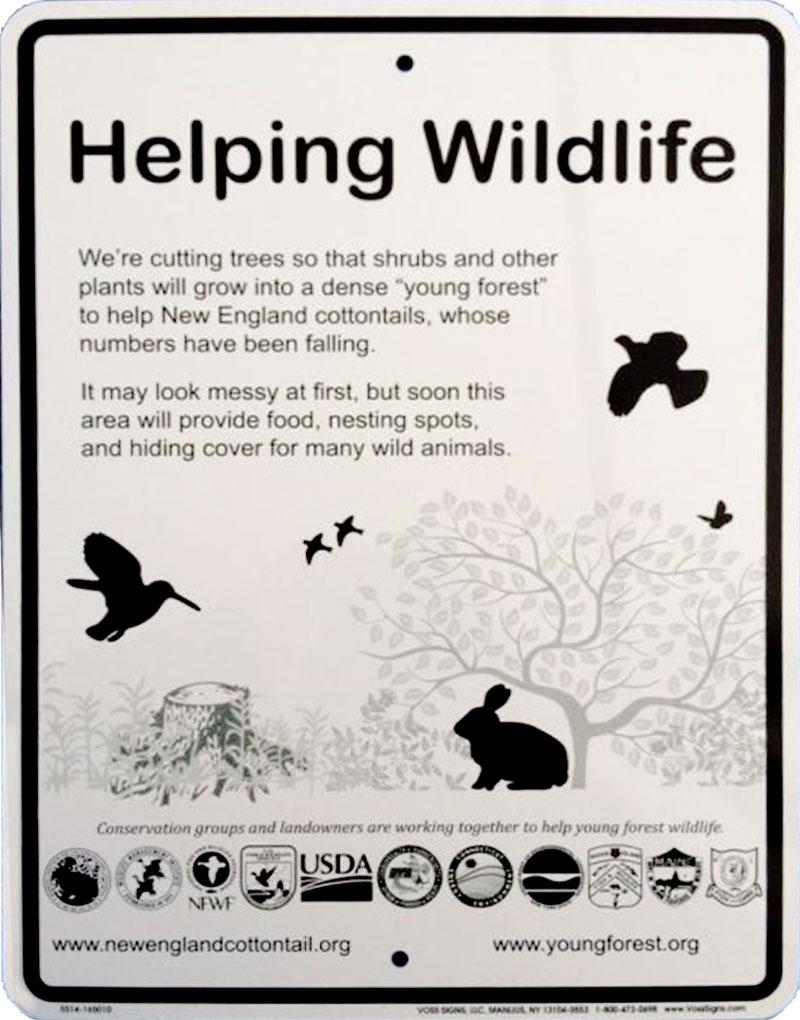 Helping Wildlife