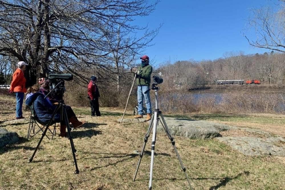 Four people with telescopes bird watching at a field by the river