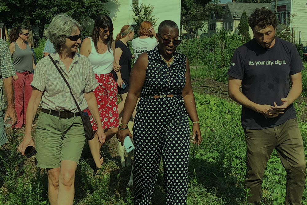 talks and walk on conservation projects