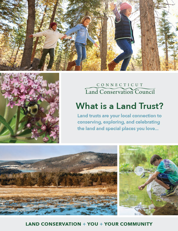 publication on local connections to conservation